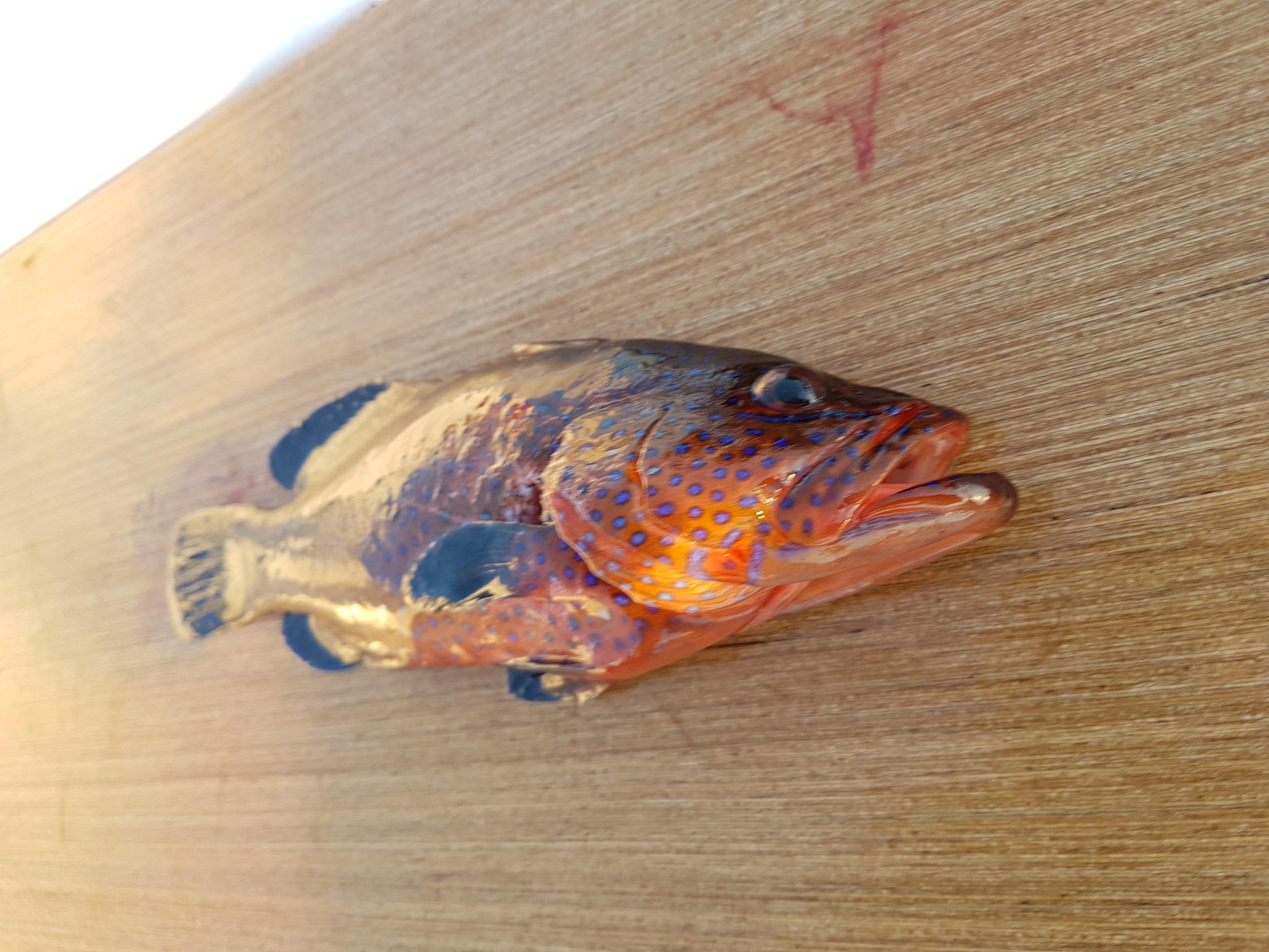 Ofroz Nasıl Bir Balıktır